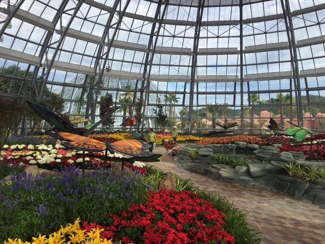 doi-van-hoa-vinperland-2 Vinpearl Land mở cửa Đồi Vạn Hoa – Công viên thực vật 5 châu độc đáo nhất Việt Nam Cẩm Nang