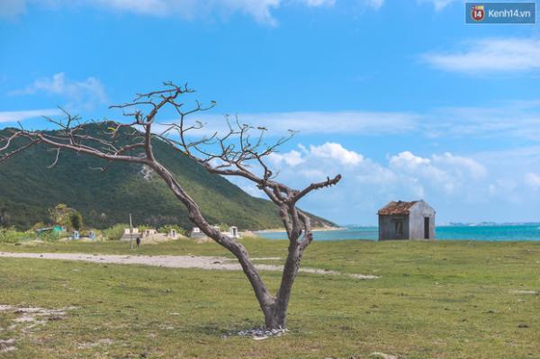 dsc-6668-1456419795341 Top 6 hòn đảo ở Khánh Hòa khiến bạn tin rằng thiên đường là có thật! Tin Tức  Tin Tức ĐIỆP SƠN Đầm Môn