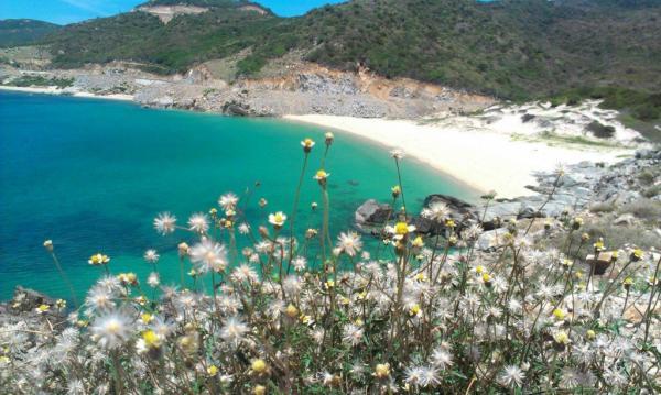 t Top 6 hòn đảo ở Khánh Hòa khiến bạn tin rằng thiên đường là có thật! Tin Tức  Tin Tức ĐIỆP SƠN Đầm Môn