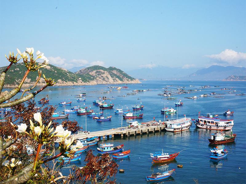 Binh-Ba-8 Đảo Bình Ba - Điểm đến hấp dẫn nhất vùng Duyên Hải Miền Trung Đia Danh Du Lịch  Đảo Bình Ba