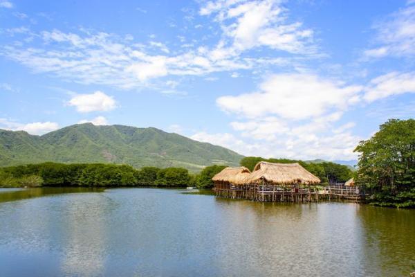rung-duoc-Nha-Trang-02(1) Đưa nhau đi trốn ở các điểm vui chơi mới nổi đang hot ở Nha Trang Cẩm Nang