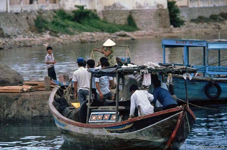 ho-ca-6 Hồ Cá Trí Nguyên năm 1992 Tin Tức  HỒ CÁ TRÍ NGUYÊN