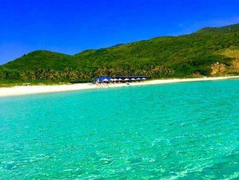 Tour khám phá Đảo Dừa 1 ngày