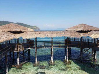 Du Lịch Nha Trang: Tour( Đảo Yến ) Bãi Bàng 1 ngày