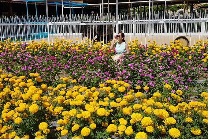 Những tấm ảnh đẹp lung linh ngay tại khu vườn hoa tươi thắm sắc màu.