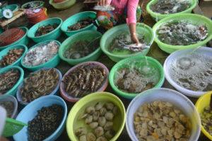Khám Phá Ẩm thực hải sản vịnh Nha Trang