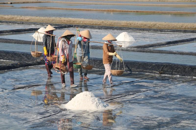 Khánh Hòa Sẽ gắn kết hoạt động du lịch biển với du lịch trải nghiệm sản xuất và chế biến muối